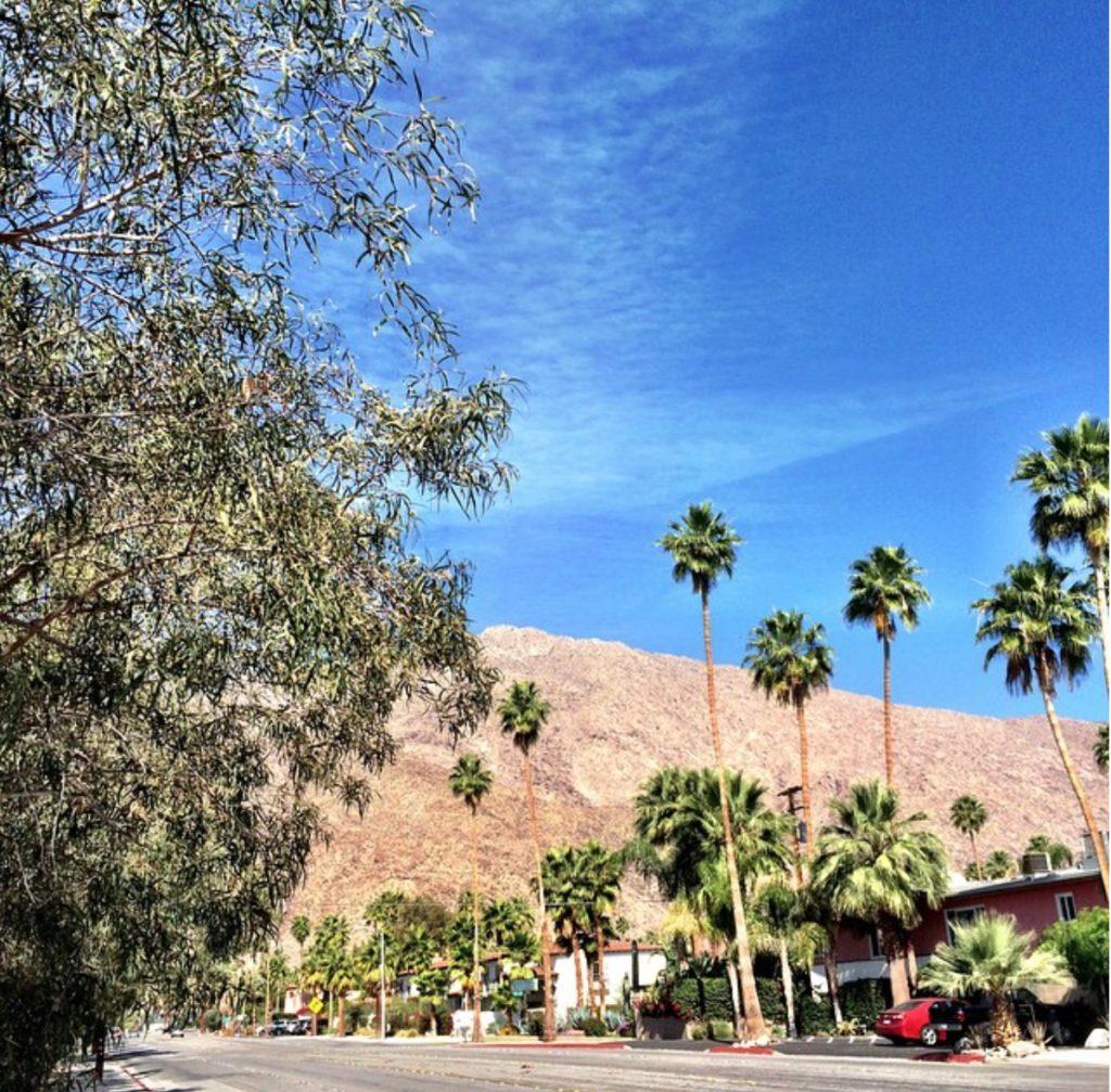 ACE-Sunday AM on E. Palm Canyon Dr.