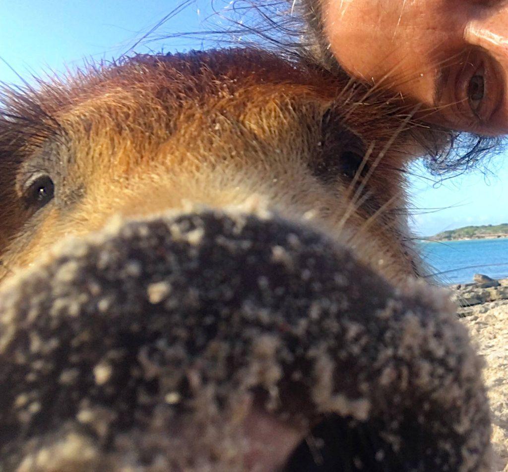 PIG AND ME SELFIE