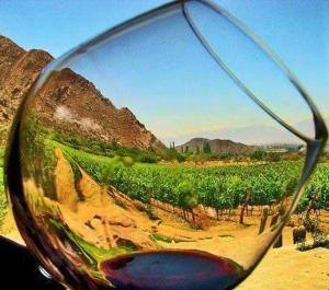 wineglassmexico